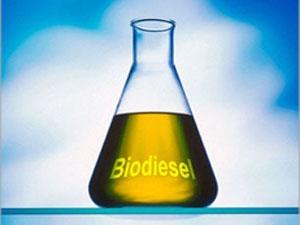 biodizel_130910